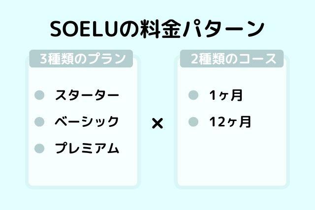 SOELU(ソエル)の料金パターン